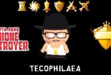 tecophilaea